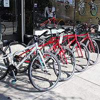 Rent Bikes from Jax Bicycle Center
